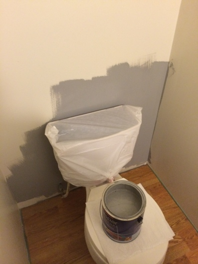 Found this nifty little trick on Pinterest. Covered the toilet with a trashbag!