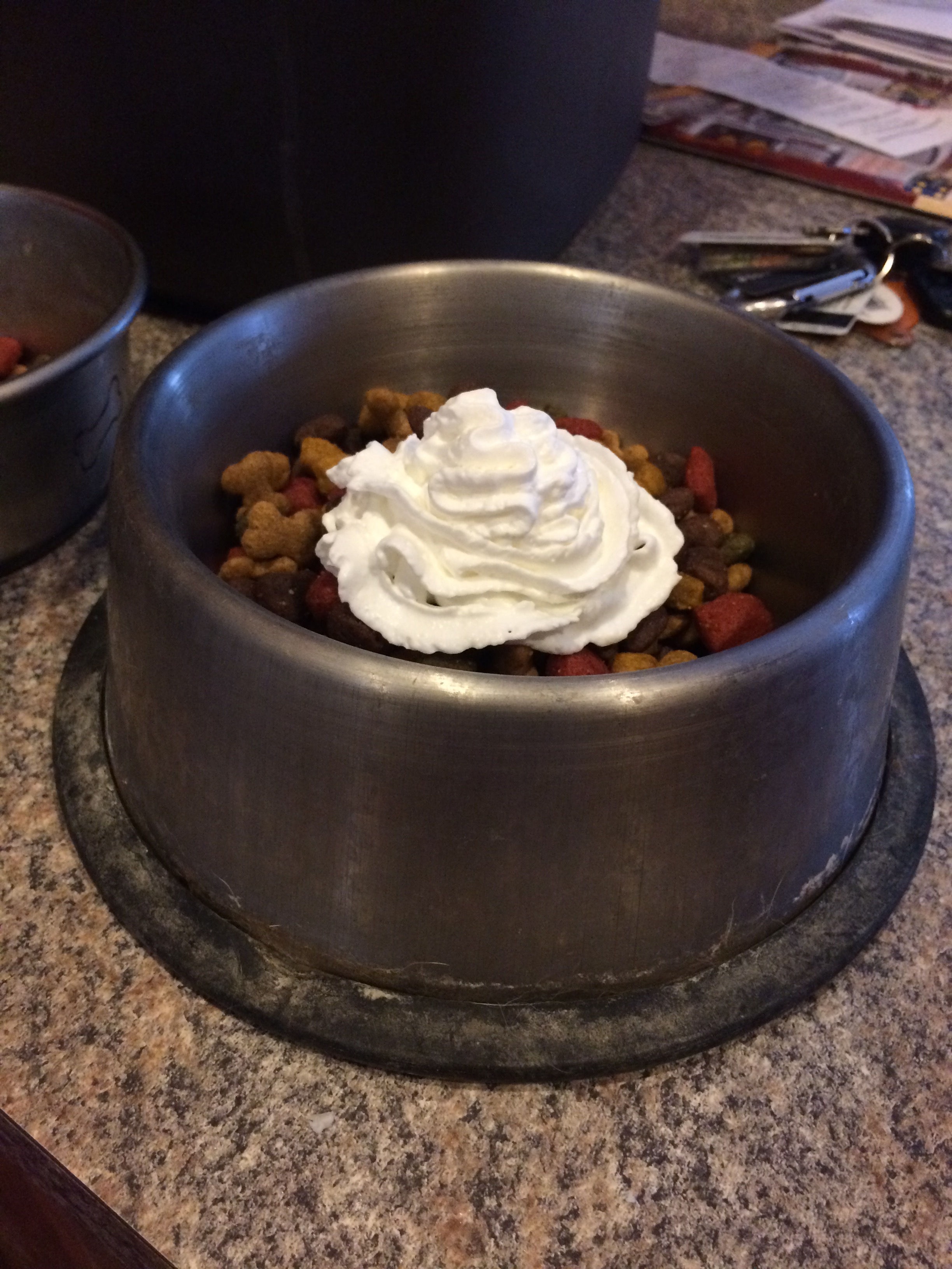 Dog food + Whipped Cream!